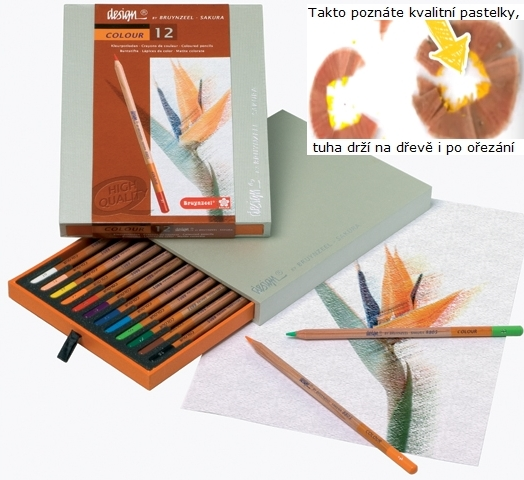 bruynzeel-sakura 8805H12 Umělecké pastelky bruyzeel Design Colour sada 12 barev v dřevěné krabici